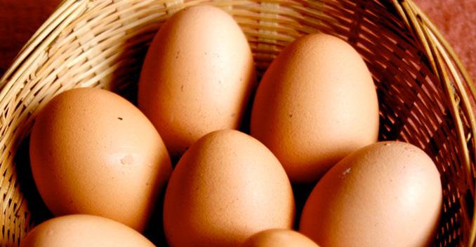 Análisis de 24 muestras de huevos