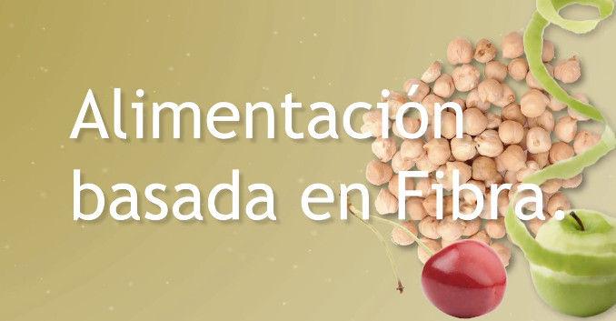 Alimentación basada en fibra