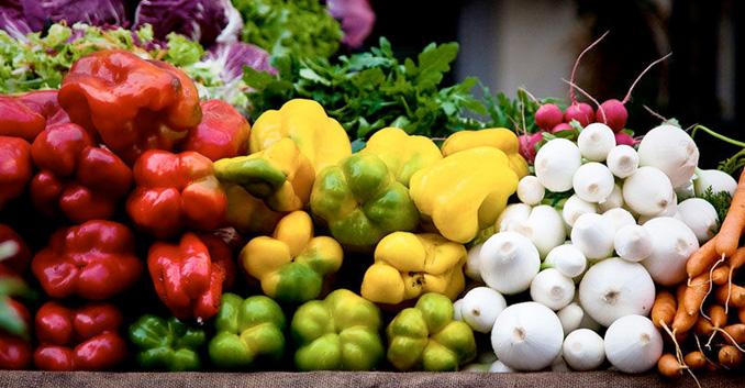 Iniciación al vegetarianismo