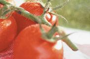 Una proporción relevante de productos ecológicos contiene residuos de pesticidas