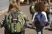 Seguridad vial en los colegios: aceptable