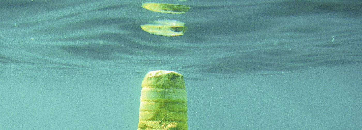 Plástico: un problema de fondo sen alternativa perfecta